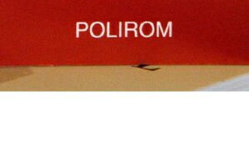 """""""Instruirea interactivă"""" în colecţia """"Ghidul profesorului"""", nou proiect editorial al Polirom"""