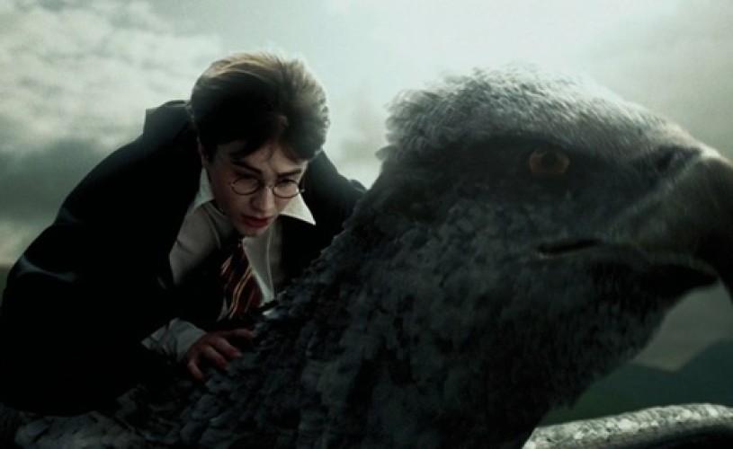 Harry Potter – Cărţi de citit până împlineşti 14 ani