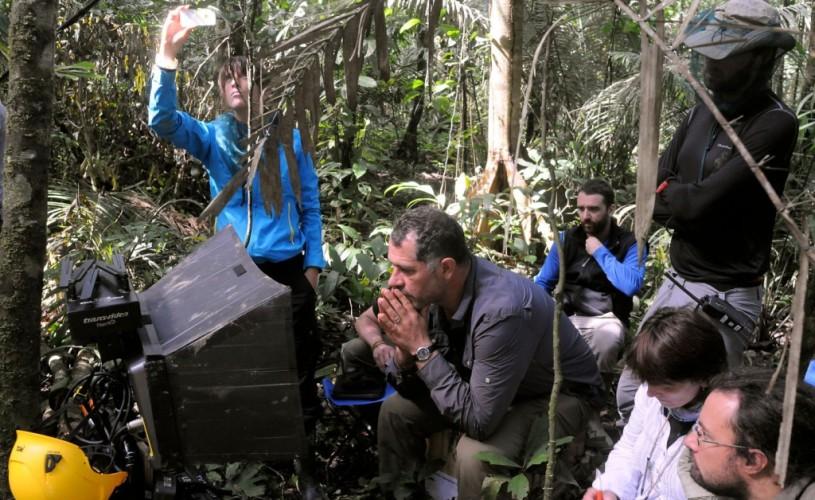 """""""A fost odată o pădure"""" – o călătorie în adâncurile junglei"""