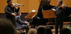 Duelul Viorilor 2014 - pasiune, talent și virtuozitate