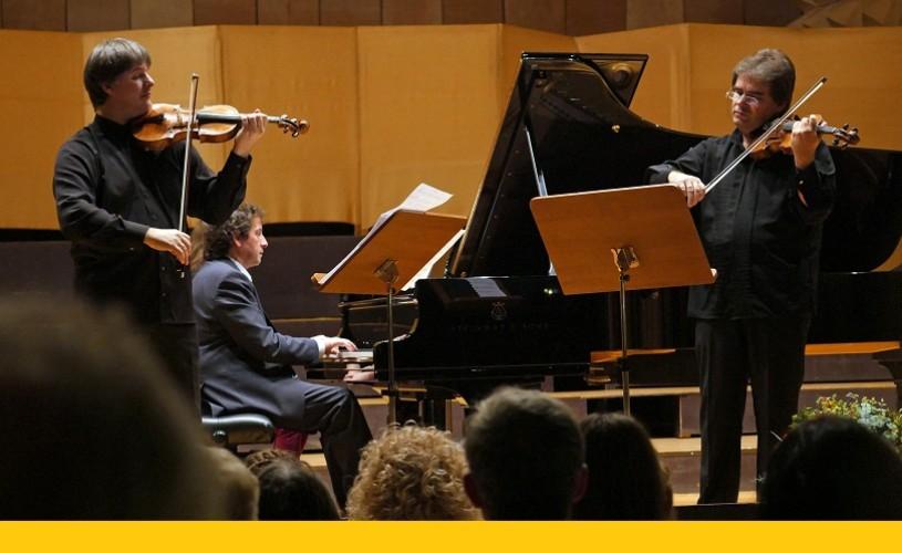 Duelul Viorilor 2014 – pasiune, talent și virtuozitate