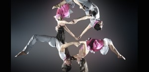 Barak Marshall, Jin Xing și Brenda Angiel, dans la înălțime în FITS