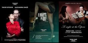 Teatru și operă, în luna mai, la Teatrul de Artă București