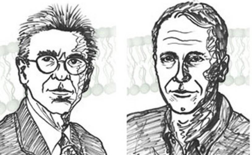 PREMIILE NOBEL 2012: Laureaţii pentru chimie sunt Brian K. Kobilka şi Robert J. Lefkowitz