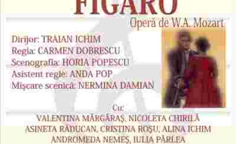 NUNTA lui  FIGARO la Brasov