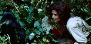 """Filmul de Oscar la TVR 2 – ,,Printre gorile"""""""