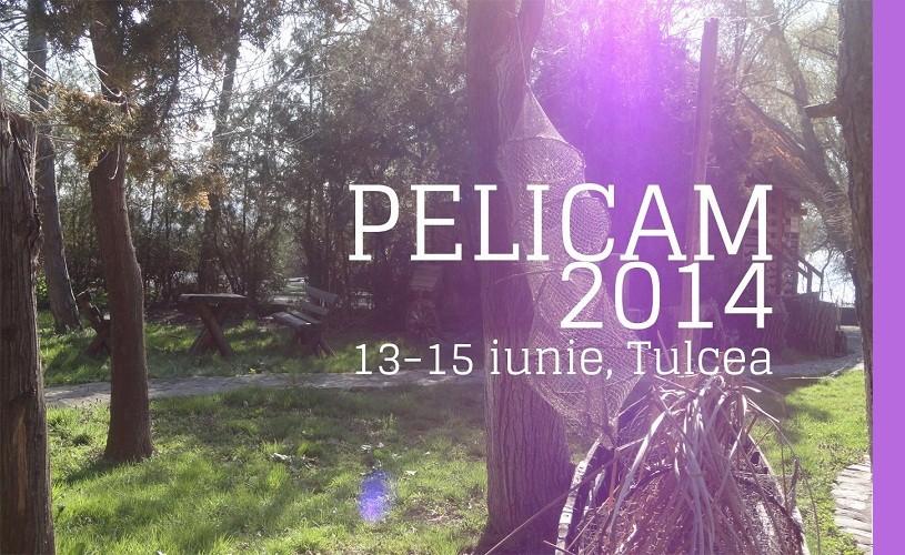 Pelicam 2014. La Fête Sauvage, documentarul lui Sergio Leone, deschide Festivalul