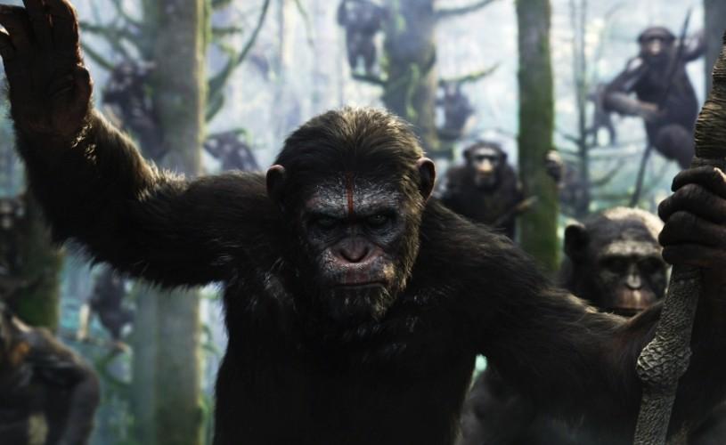 <strong>Zece</strong> motive pentru care sunt simpatice maimuțele (cinematografice)