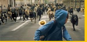 Câștigătorul Un certain Regard închide Les Films de Cannes à Bucarest