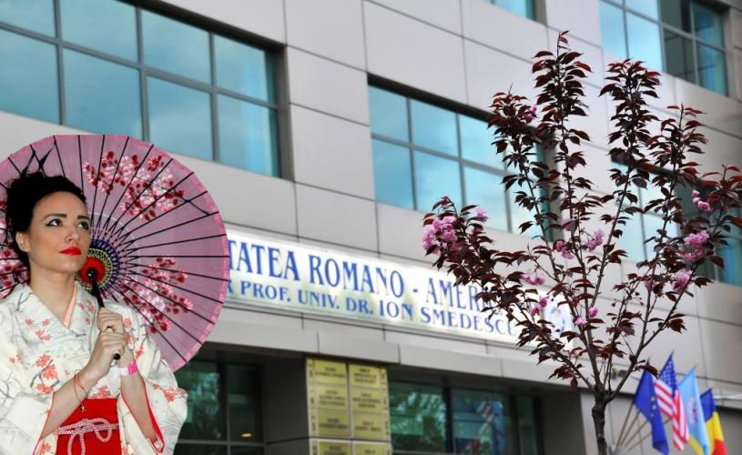 Încep Zilele Culturii Japoneze 2015