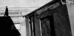 """Expoziţia de fotografie """"Tatăl și fiii"""", la Ceainăria Cărturești"""