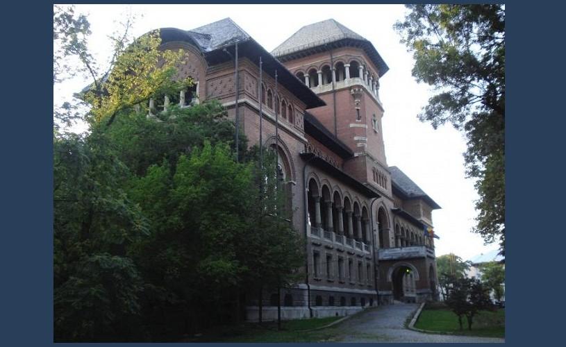 Acuze grave la Muzeul Național al Țăranului Român. Ce spune directorul MNȚR?