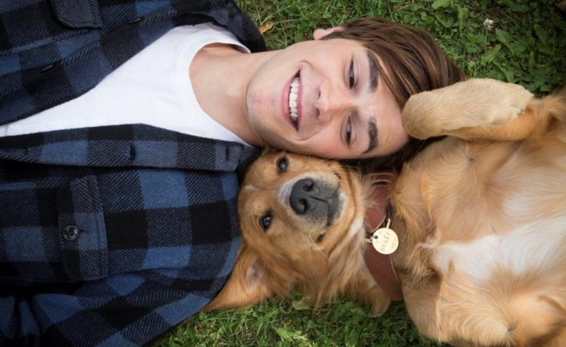 """""""Câinele, adevăratul meu prieten"""" îşi dă întâlnire cu spectatorii din 27 ianuarie la cinema"""