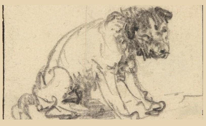 O schiţă de Rembrandt, autentificată după 250 de ani