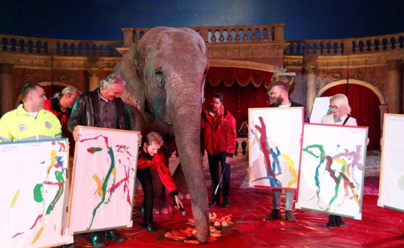 Tablouri pictate (de plăcere!) de un elefant , vândute la o licitaţie în Ungaria. 150 de dolari bucata…