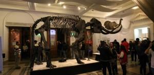 180 de complexe muzeale deschise de Noaptea Muzeelor