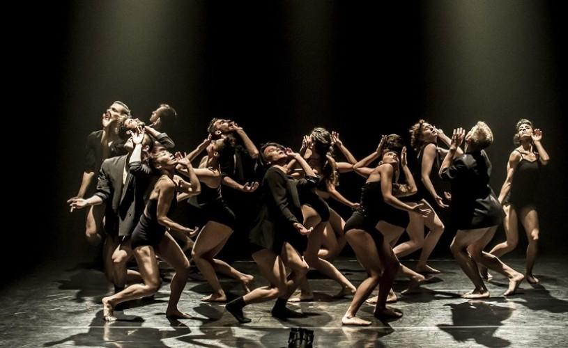 """Tristan Carter, dansator al Kibbutz Contemporary Dance Company: """"Mediul în care lucrăm este complet unic"""""""