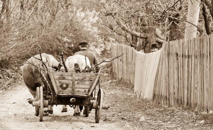 Siliștea Gumești, Teleorman. 30 de ani mai târziu – Povestirile lui Tomșa