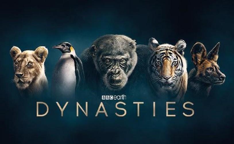 "Documentarul BBC Earth ""Dynasties"", narat de David Attenborough – primul trailer"
