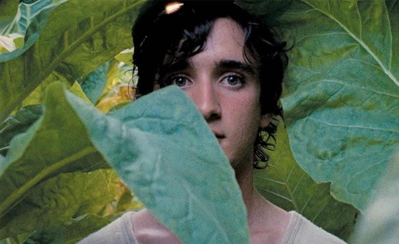 Festivalul Filmului European sau cum să înțelegem Europa de azi