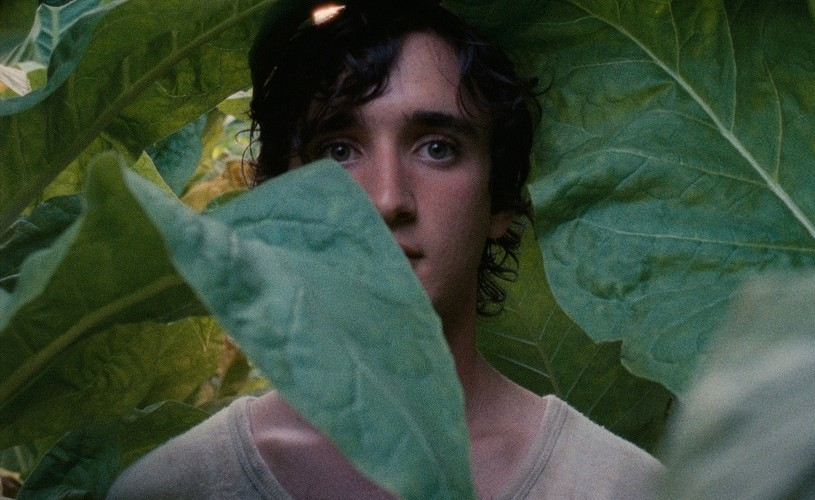 """""""Lazzaro felice"""" – magie, mister și mituri, din 26 iulie în cinema"""