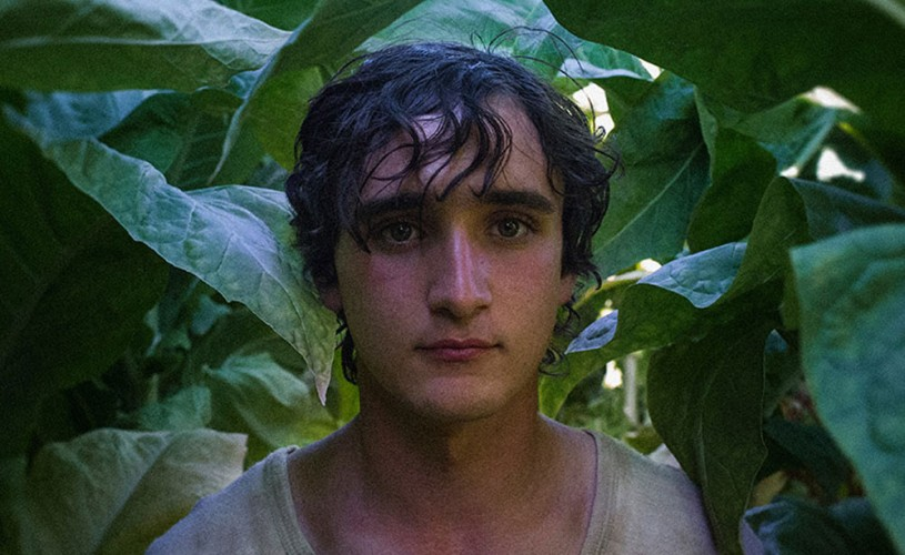 """Lazzaro felice"". Puritate ★★★★★"