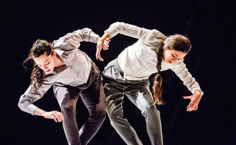 Cum a fost. 7 spectacole de dans FITS 2019