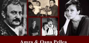 Oana Pellea: