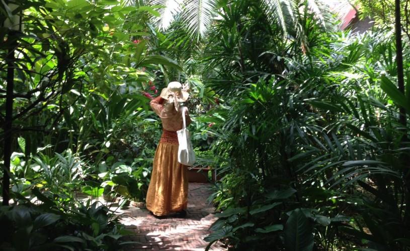 În grădinile de orhidee ale lui Jim Thompson