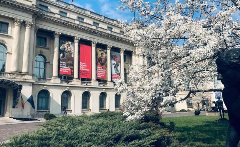 Muzeul Național de Artă al României își reia activitatea