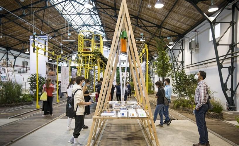 Povestea bienalei timișorene de arhitectură Beta 2020. Un exemplu de responsabilitate față de tot ce ne înconjoară