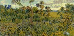 Un Van Gogh rătăcit într-un pod