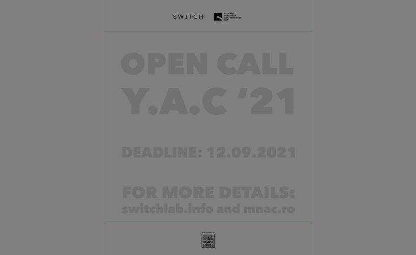Se caută artiști vizuali tineri pentru Young Artists Connections '21!