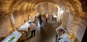 Romanian Jewelry Week 2.0  - 191 designeri de bijuterie contemporană, 6 expoziții colective, 5 locații culturale conexe
