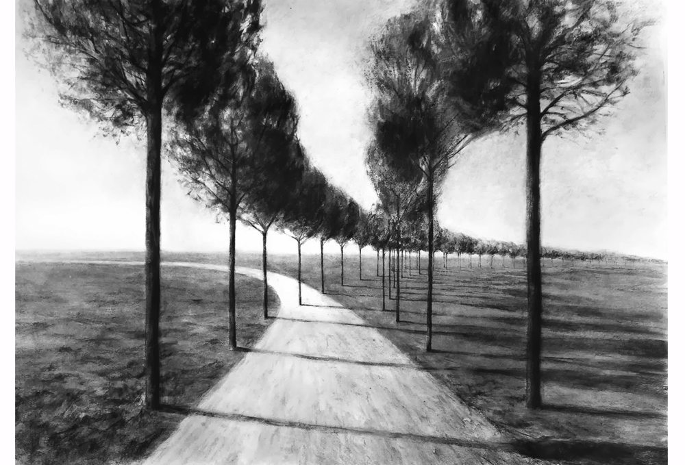 Quiebro-Charcoal-and-pencil-on-paper-50-x-70-cm-2013-