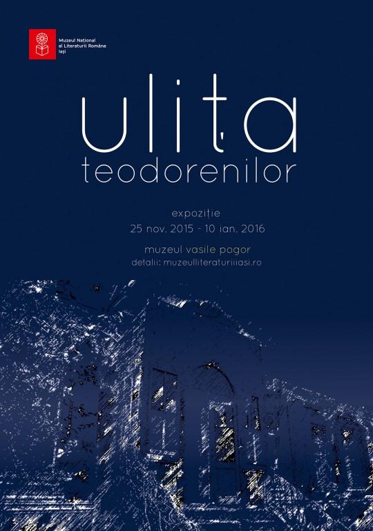 AFIS ULITA TEODORENILOR 2a web