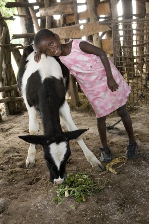 Send a Cow_1. Credits Send a Cow