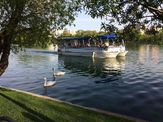 """La plimbare cu vaporașul pe lacul din parcul """"Alexandru Ioan Cuza"""""""