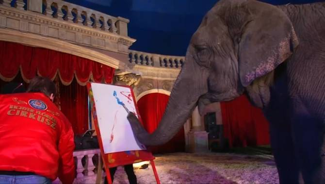 elefantul Sandra